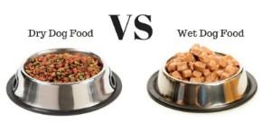 dry dog food vs wet dog food