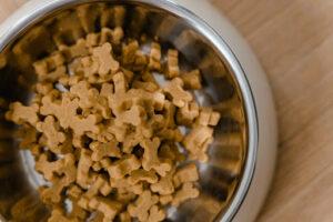 dog bone dry dog food