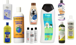Photo of a bunch of dog shampoos
