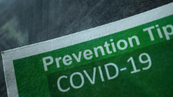 COVID-19 Prevention Services for Dogs and Pets in Sarasota FL