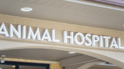 which is the best Sarasota Animal Hospital?